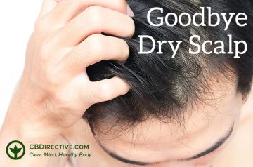 cbdirective-cbd-article-dry-scalp-recovery-oils